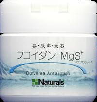 谷・服部・大石 フコイダン MgS+